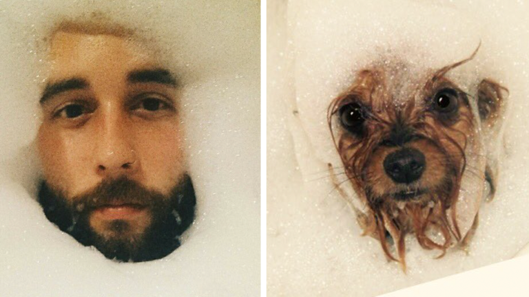 humans-look-like-dogs-doppelganger-you-are-dog-now-twitter-fb